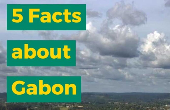 5 Facts About Gabon From Africa Memoir